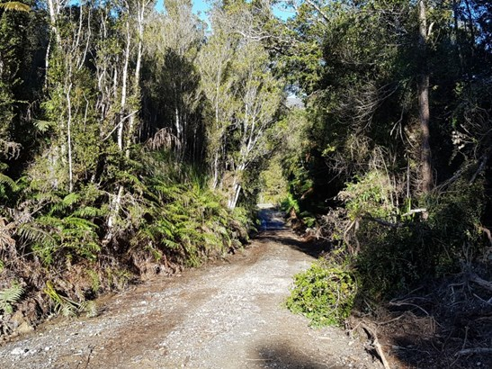 Sec 1 Ruatapu Ross Highway, Ross, Westland - NZL (photo 5)