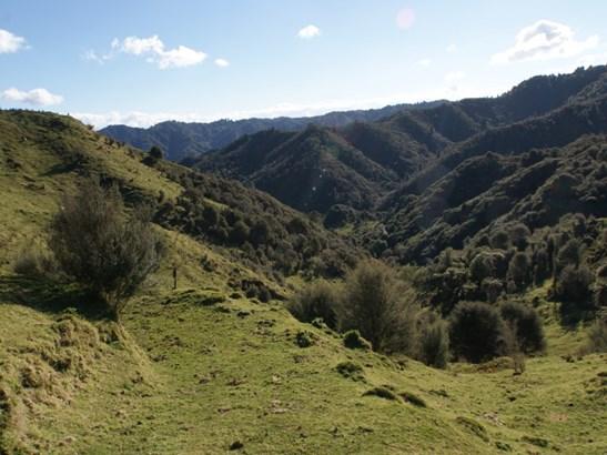 426 Pukeatua Road, Taumarunui, Ruapehu - NZL (photo 2)