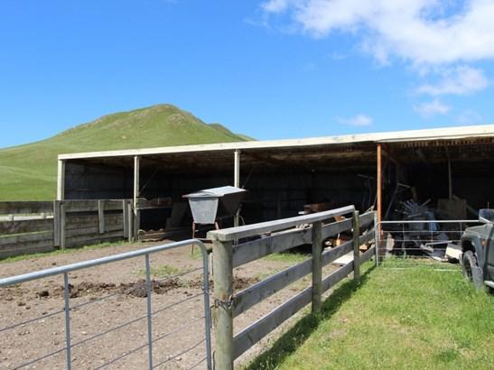 10341 Route 52, Pongaroa, Tararua - NZL (photo 4)