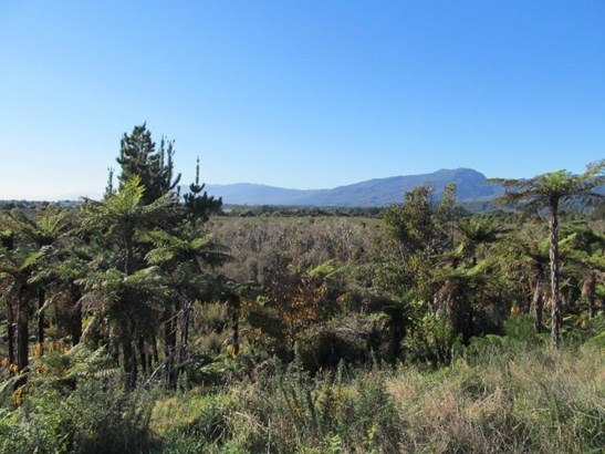 Lot 1 Lower Buller Gorge Road, Westport Surrounds, Buller - NZL (photo 4)