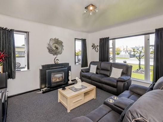 65 Salisbury Street, Levin, Horowhenua - NZL (photo 3)