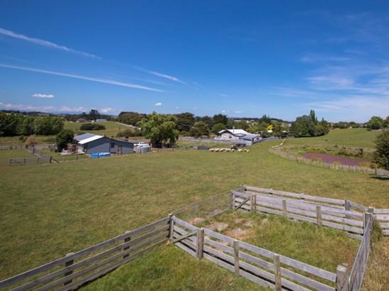 - Hastings Street, Halcombe, Manawatu - NZL (photo 3)