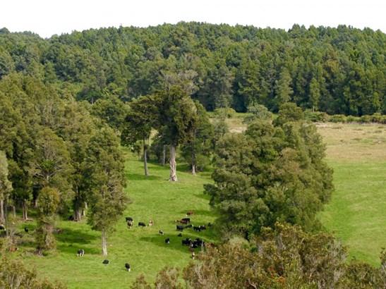 37 Wangapeka Road, Little Wanganui, Buller - NZL (photo 1)