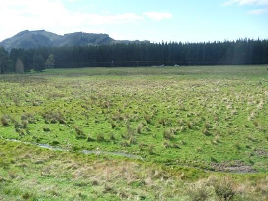 - Waiohine Valley Road, Woodside, South Wairarapa - NZL (photo 5)