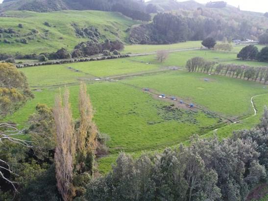 78 Waituna Rd, Pahiatua, Tararua - NZL (photo 3)