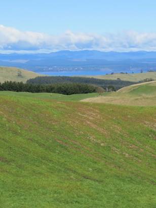 691 Poihipi Road, Kinloch, Taupo - NZL (photo 5)
