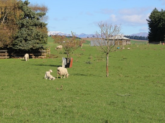 Oamaru, Waitaki - NZL (photo 3)