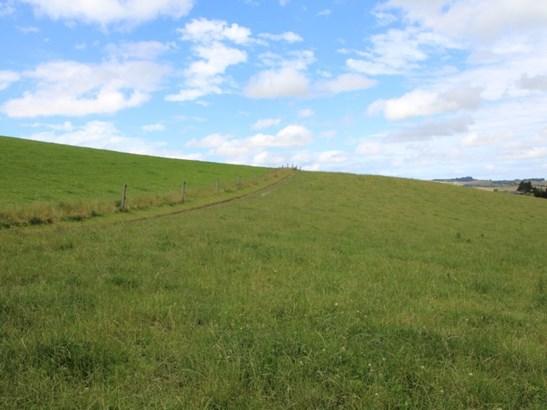 - Robbs Crossing, Oamaru, Waitaki - NZL (photo 5)