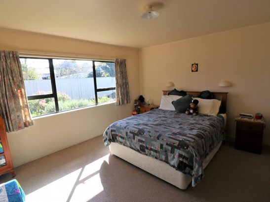 19a King Street, Dannevirke, Tararua - NZL (photo 3)