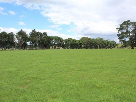 268 Ngamoko Road, Dannevirke, Tararua - NZL (photo 4)