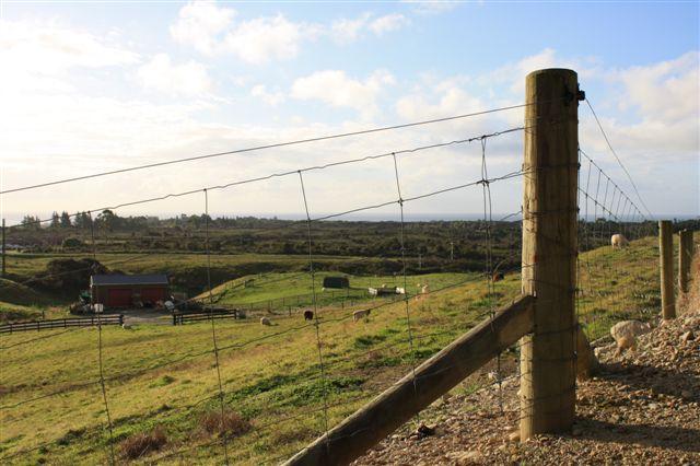 29g Reg Cox Drive, Blue Spur, Westland - NZL (photo 2)