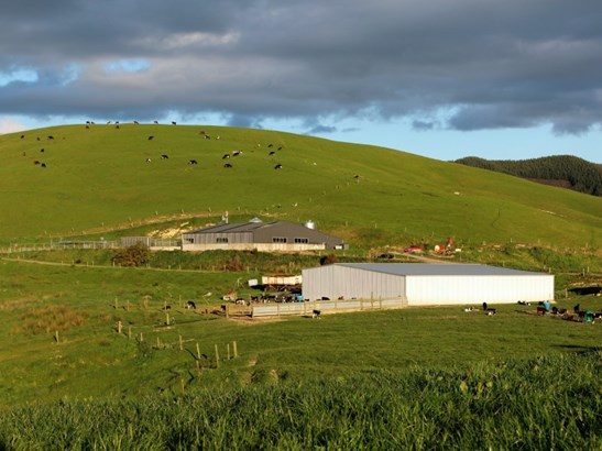 207 Mangatuna Road, Dannevirke, Tararua - NZL (photo 5)