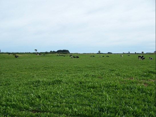 - Santoft Road, Bulls, Rangitikei - NZL (photo 1)