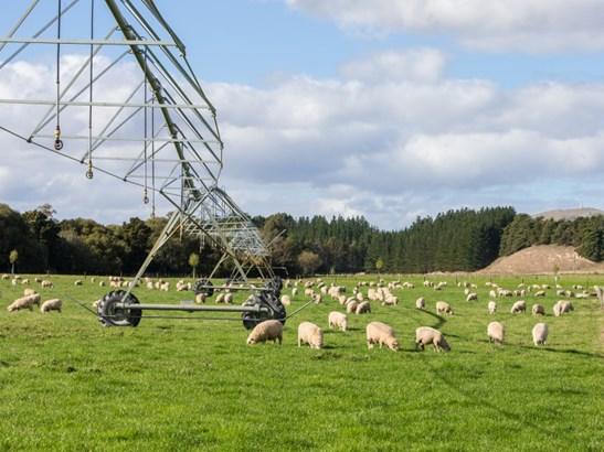 374 Lees Pakaraka Road, Masterton - NZL (photo 1)