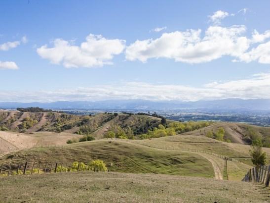 374 Lees Pakaraka Road, Masterton - NZL (photo 5)