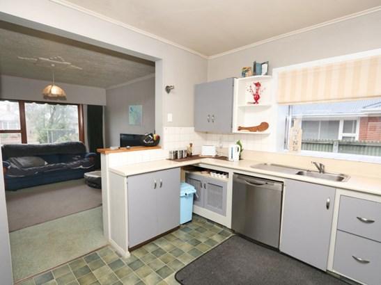 6 Porter Street, Netherby, Ashburton - NZL (photo 4)