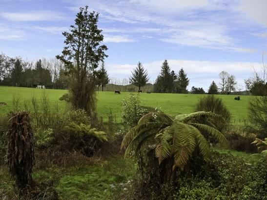 10 Owhango Road, Owhango, Ruapehu - NZL (photo 1)