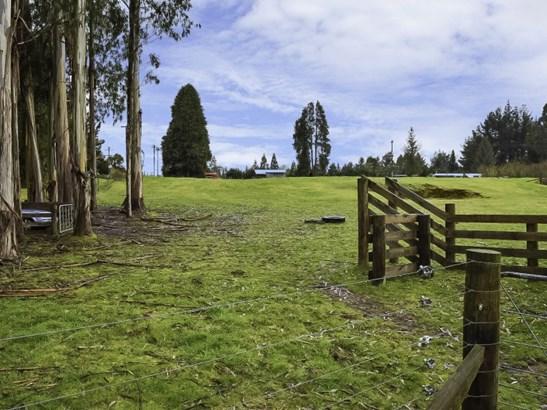 10 Owhango Road, Owhango, Ruapehu - NZL (photo 4)