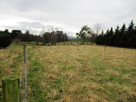 1274 Mt Nessing Road, Albury, Fairlie - NZL (photo 4)