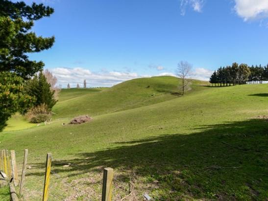 44c Mangatarata Road, Waipukurau, Central Hawkes Bay - NZL (photo 3)