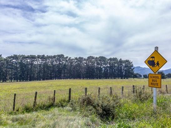 . Underhill Road, Greytown, South Wairarapa - NZL (photo 5)