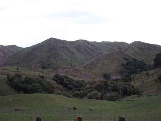 1807 Longrange Road, Blackhead, Omakere - NZL (photo 4)