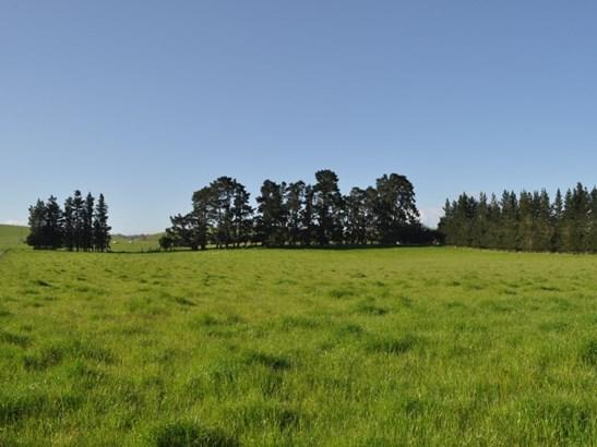 - Downs Road, Hororata, Selwyn - NZL (photo 2)