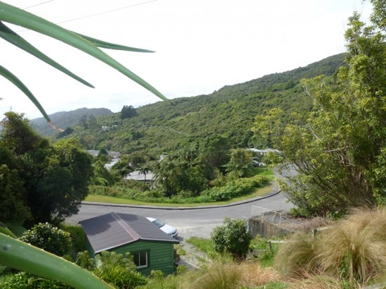36 Freyberg Terrace, Greymouth, Grey - NZL (photo 2)