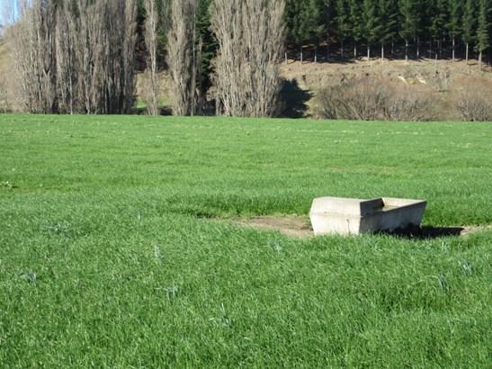 3245 State Highway 2 , Waipukurau, Central Hawkes Bay - NZL (photo 3)