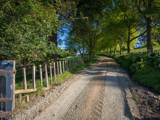 246 Kingston Road, Tokomaru, Palmerston North - NZL (photo 1)