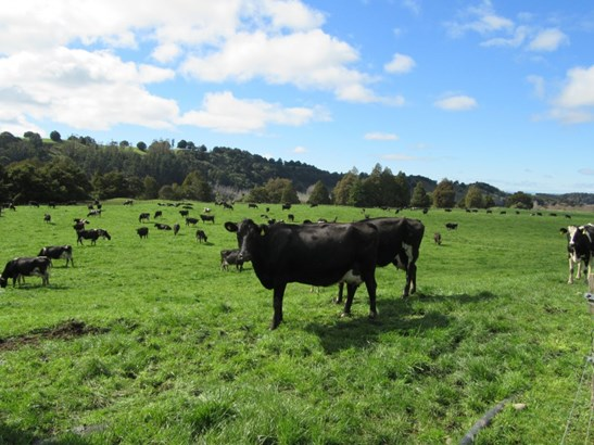 406 Tuki Tuki Road, Ashley Clinton, Central Hawkes Bay - NZL (photo 1)