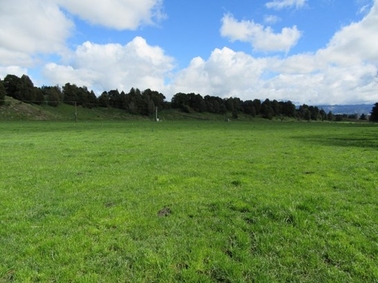 406 Tuki Tuki Road, Ashley Clinton, Central Hawkes Bay - NZL (photo 4)