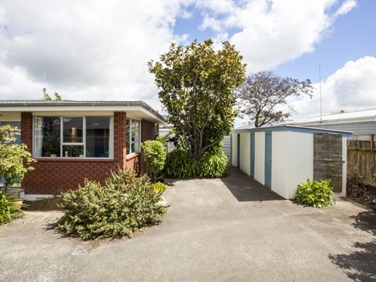 17a Limbrick Street, Terrace End, Palmerston North - NZL (photo 2)