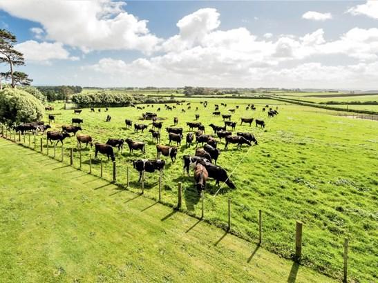 3168 State Highway 3, Waitotara, South Taranaki - NZL (photo 4)