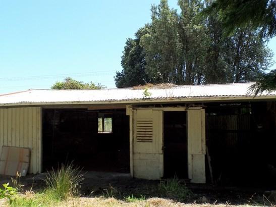 708 State Highway 67, Nikau, Mokihinui, Buller - NZL (photo 5)