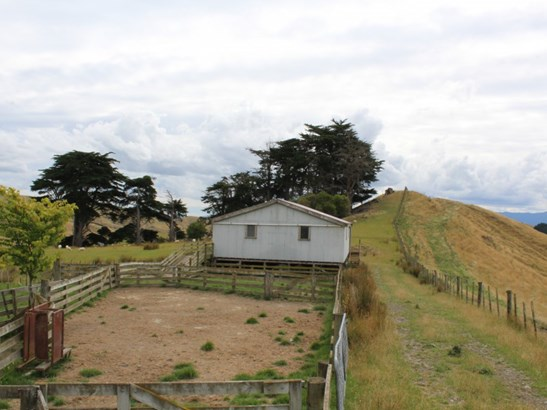 180 Waitahora Road, Dannevirke, Tararua - NZL (photo 3)