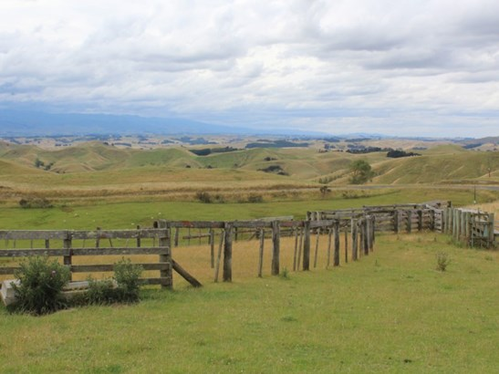 180 Waitahora Road, Dannevirke, Tararua - NZL (photo 4)