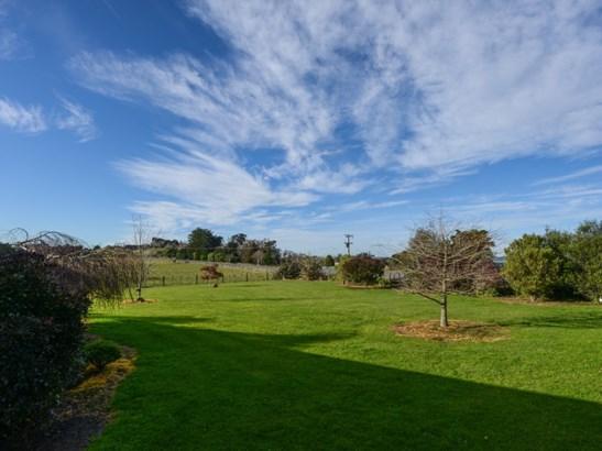 346 Porangahau Road, Waipukurau, Central Hawkes Bay - NZL (photo 4)