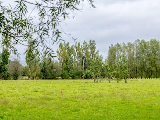 . Wood Street, Greytown, South Wairarapa - NZL (photo 4)