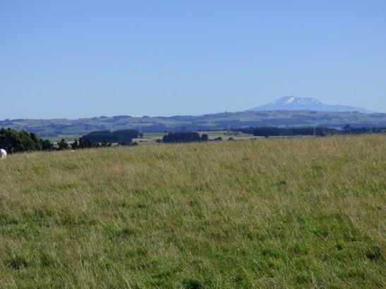 Lot 17 Mt Biggs Road, Mt Biggs, Halcombe - NZL (photo 2)