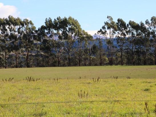 Lot 1 Happy Valley Road, Oamaru, Waitaki - NZL (photo 5)