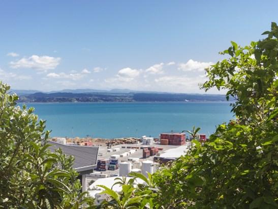 4 Seapoint Road, Bluff Hill, Napier - NZL (photo 1)