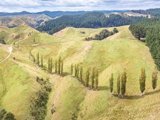 582 Ongo Road, Hunterville, Rangitikei - NZL (photo 4)