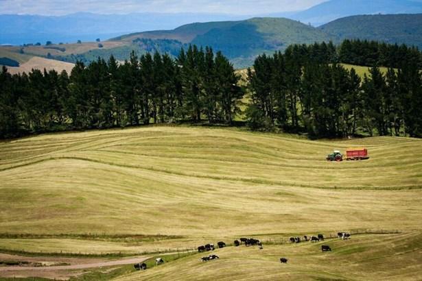 1549 Poihipi Road, Oruanui, Taupo - NZL (photo 1)