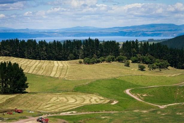 1549 Poihipi Road, Oruanui, Taupo - NZL (photo 2)