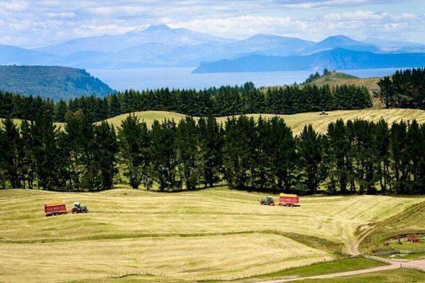 1549 Poihipi Road, Oruanui, Taupo - NZL (photo 3)