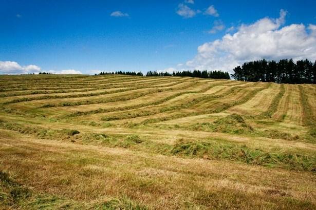 1549 Poihipi Road, Oruanui, Taupo - NZL (photo 4)