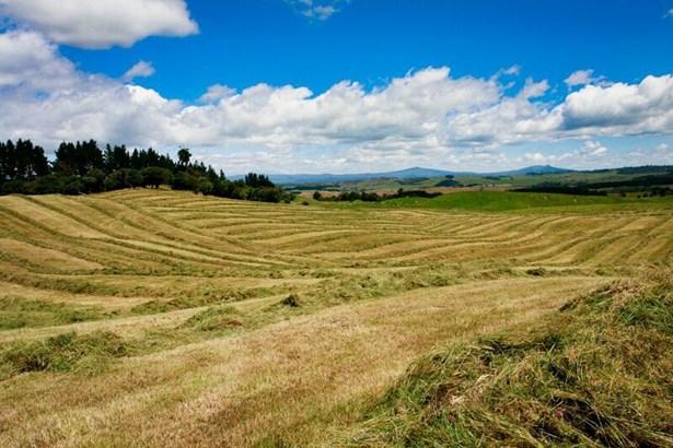 1549 Poihipi Road, Oruanui, Taupo - NZL (photo 5)