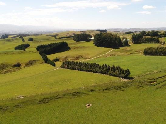 498 Ridge Road North, Pahiatua, Tararua - NZL (photo 2)