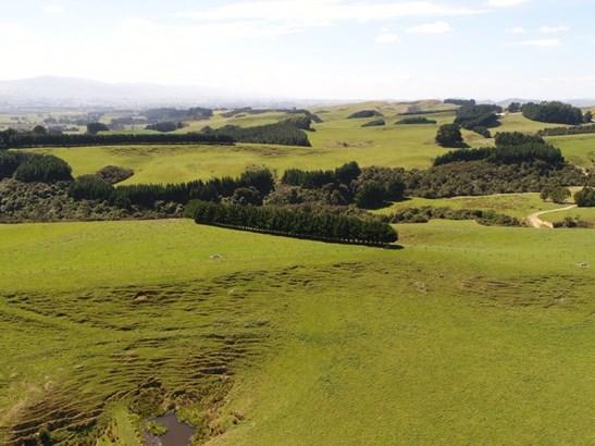 498 Ridge Road North, Pahiatua, Tararua - NZL (photo 4)